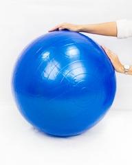 Мяч гимнаст Фит Бол 55,65см